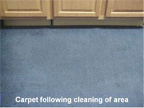 Carpet following cleaning of area.