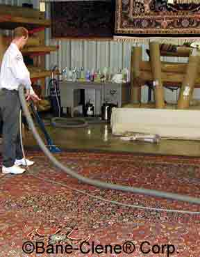 Cleaning Area Rug with LCA 256