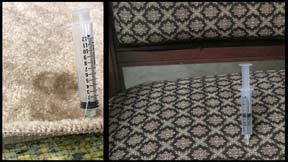 Inject pet urine deodorizer directly into carpet backing and pad