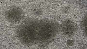 Chemspec Liqua-Gel Carpet Spotter