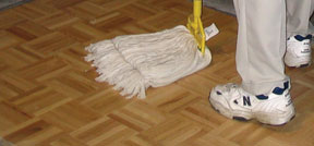 Lint free mop for Wood-Solv Prep
