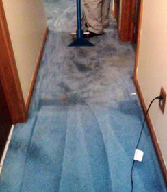 Heavy Duty Cleaning Filthy Carpet with TLS 2000 Heavy Duty Carpet Prespray