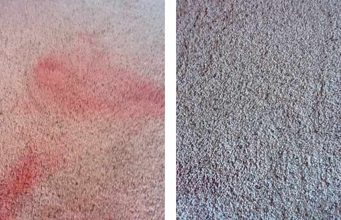 Removing paint spill off carpet
